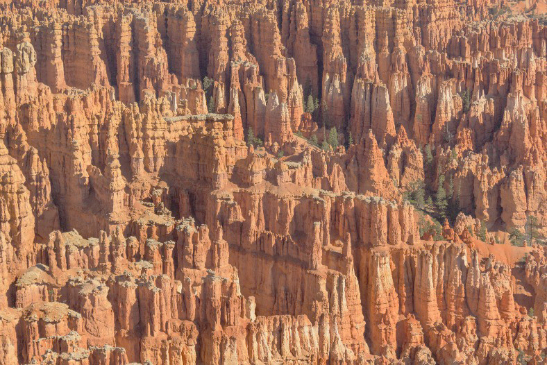 Bryce National Park - Spire Abstract