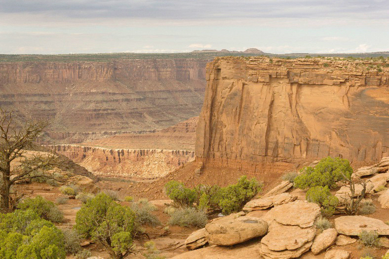 Canyonlands - Another Overlook